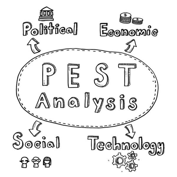 Hand Draw Cute Doodles With Varieties Of Pest Analysis Icons And