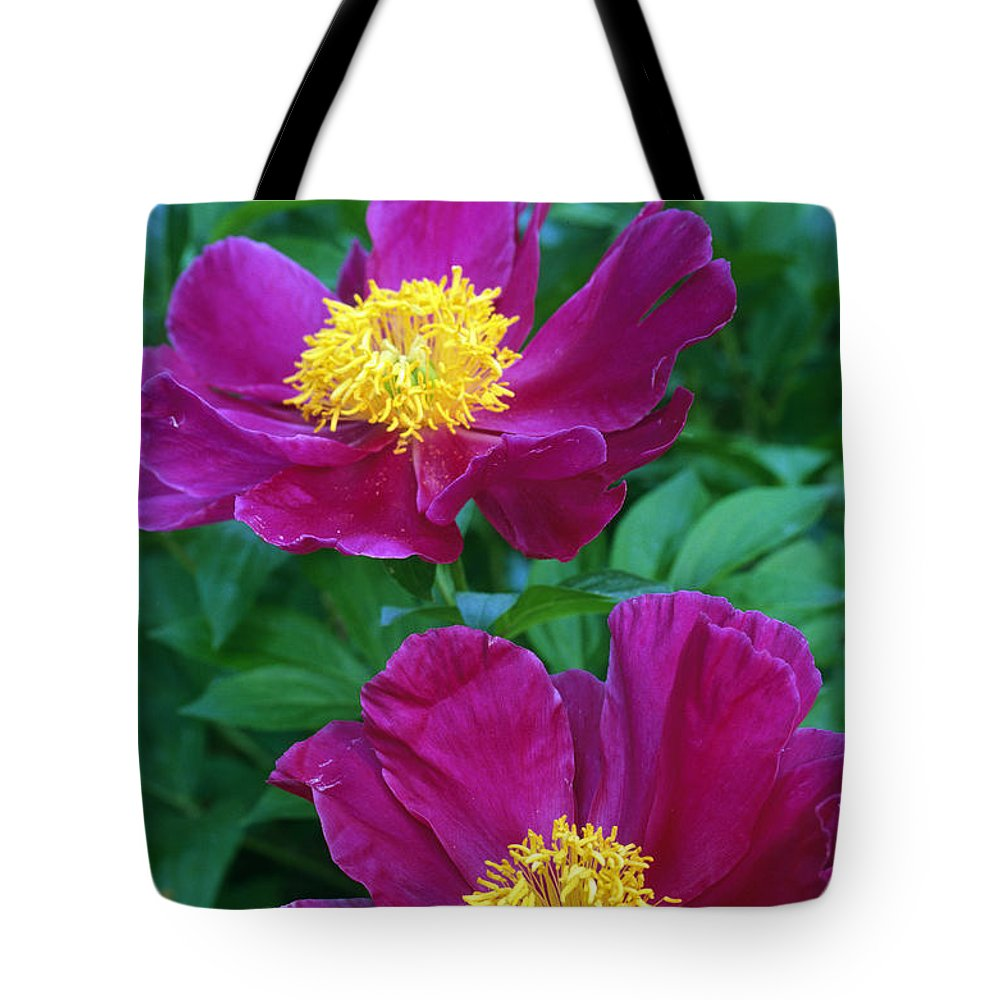 Pianese Flowers Pianese Flowers Tote Bag