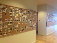 Employee Recognition Wall Of Fame Pictures to Pin on ...