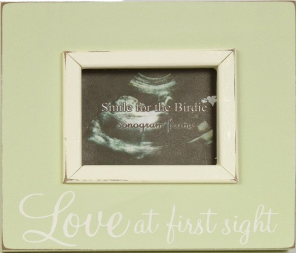 Picture Frames - green photo frame