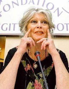 Brigitte Volkert - Bilder, News, Infos aus dem Web