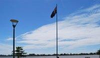 Solar Led Flagpole Light Reviews  Shelly Lighting