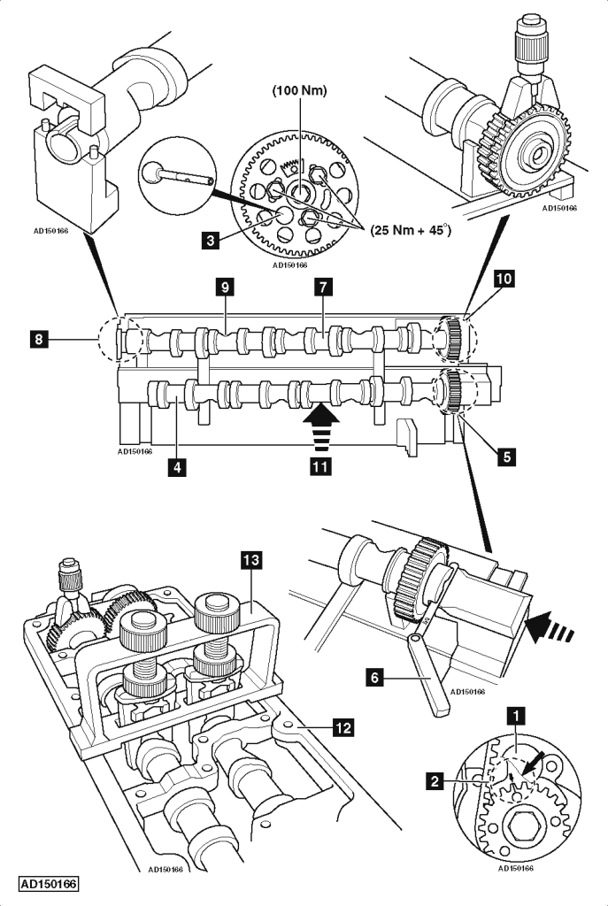 timing belt gears
