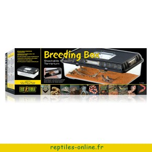 beeding-box-exo-terra-large