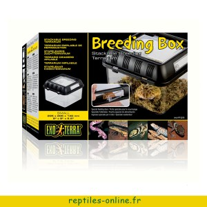 beeding-box-exo-terra-small