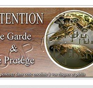 plaque python
