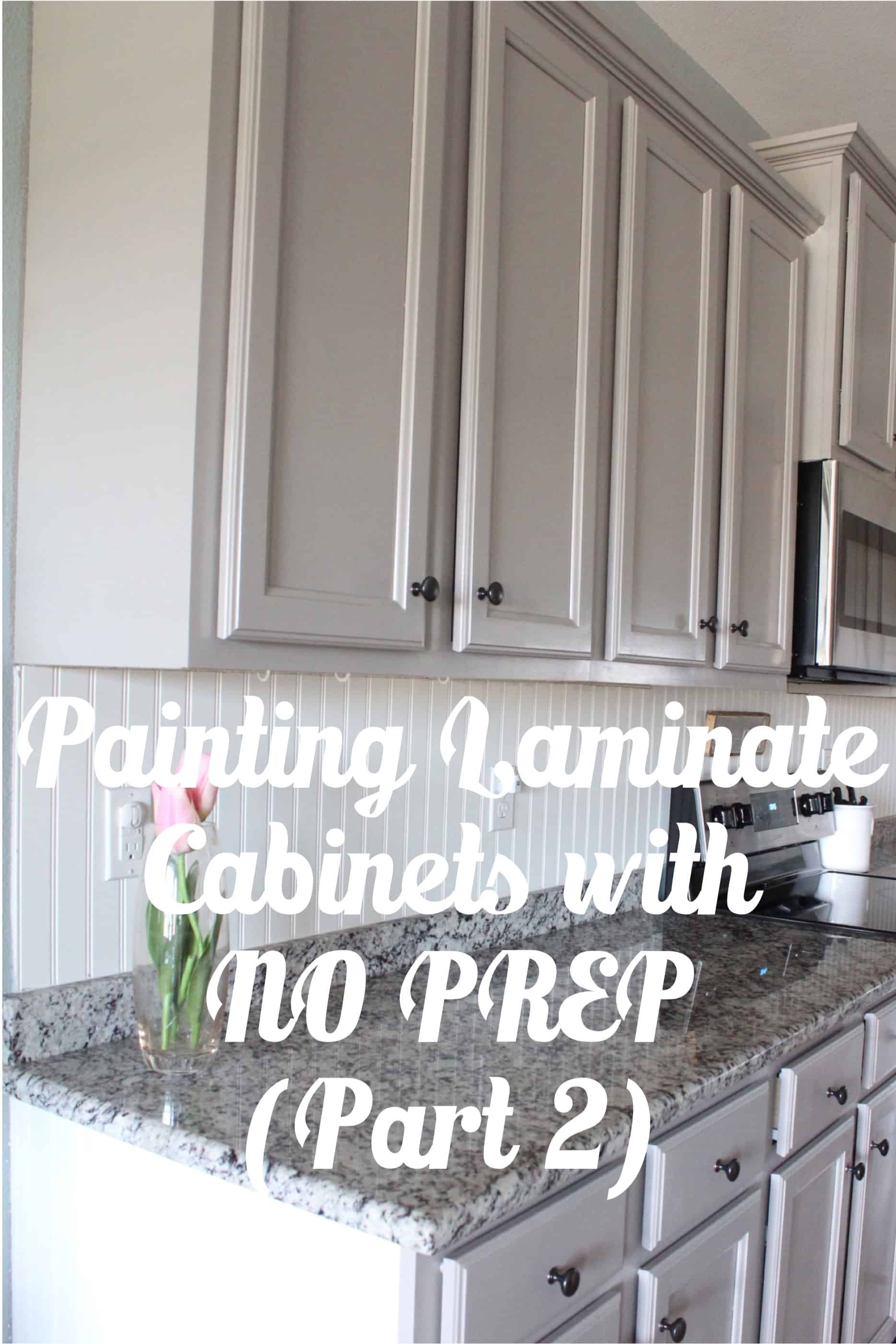 How To Prep Kitchen Cabinets For Painting Painting Laminate Cabinets With No Prep Work Part 2