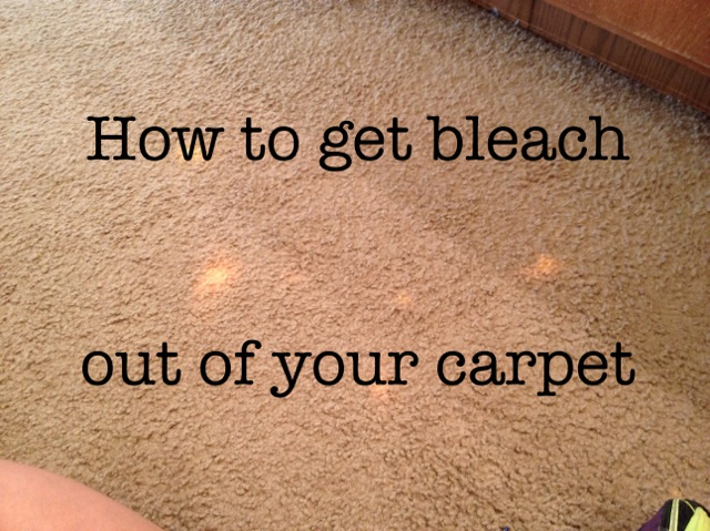 How To Get Bleach Out Of Your Carpets Repurposeful Boutique