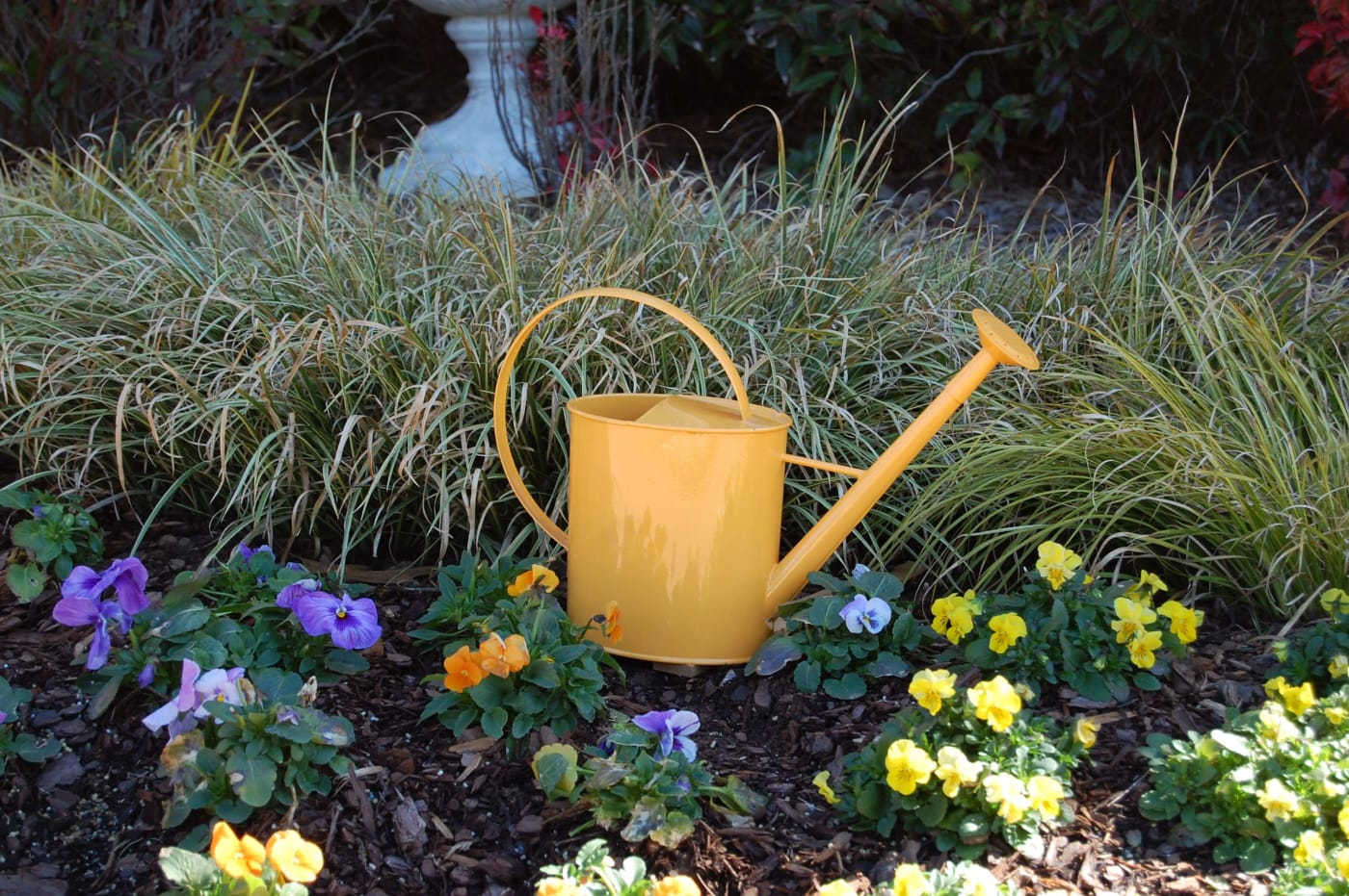 Watering Cans With Long Spouts Austram Yellow 1 Gal Metal Watering Can With Long Spout