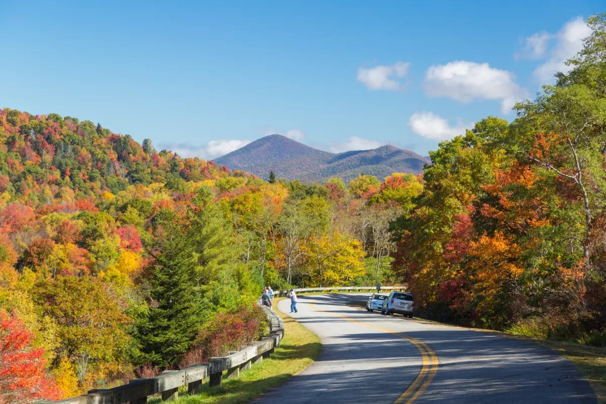 Gatlinburg In The Fall Wallpaper Fall Color Forecast 2016 Long Leaf Season Ahead