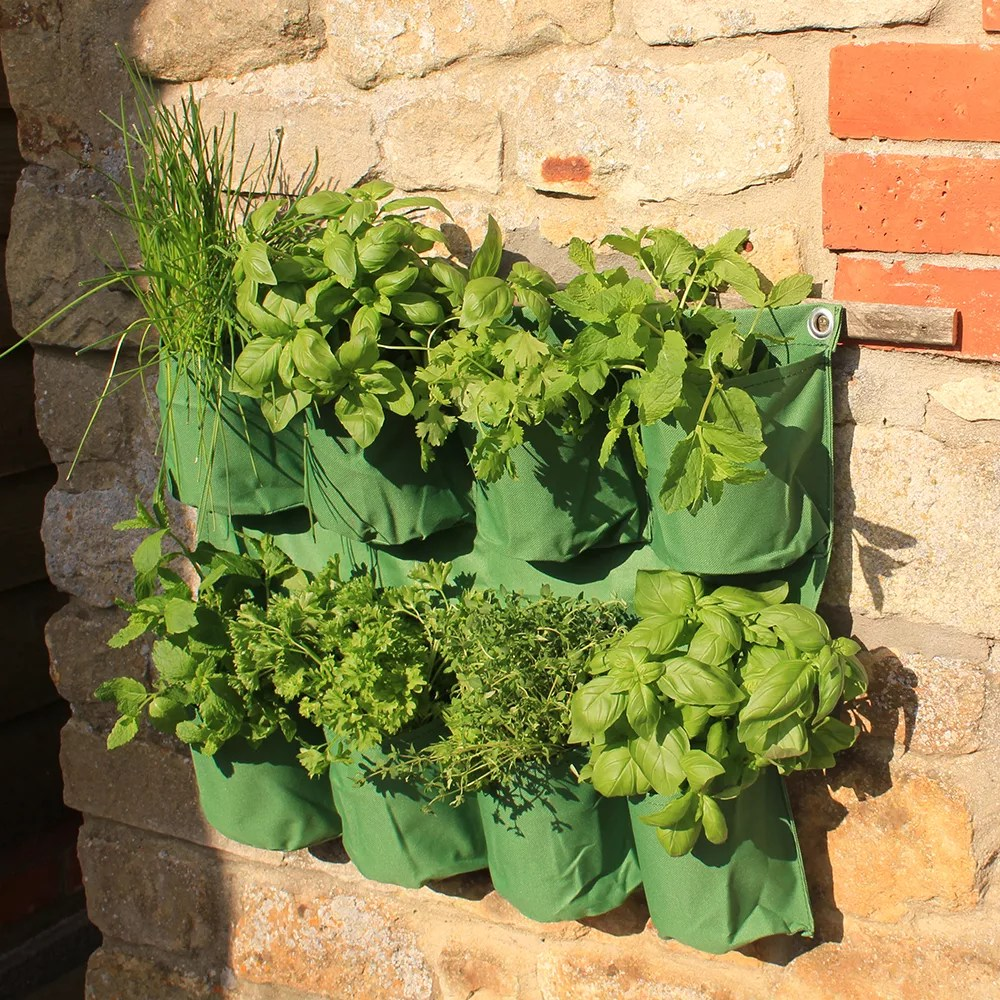 Planter For Herbs Herb Wall Planter