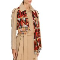 italist | Best price in the market for Burberry Burberry ...