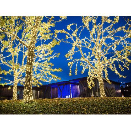 Medium Crop Of Fort Worth Lighting