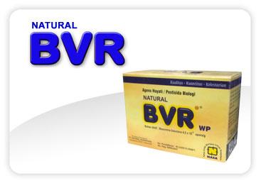 Jual Pestisida Organik Natural BVR
