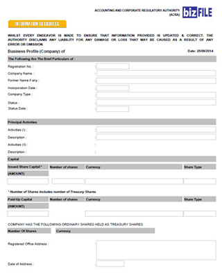 How to Form a Singapore Private Limited Company Registration Guide