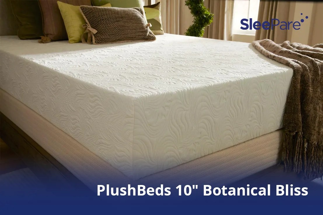 Dreams Mattress Guarantee Plushbeds 10