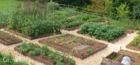 How to Plan a Vegetable Garden: A Step