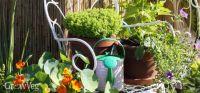 Grow an Edible Garden - On Your Balcony!