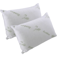 2-Pack: Bamboo Pillows