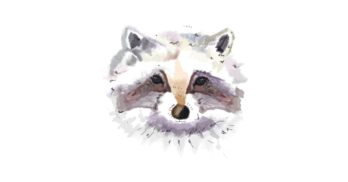 Mr Raccoon Raccoon T Shirt Teepublic