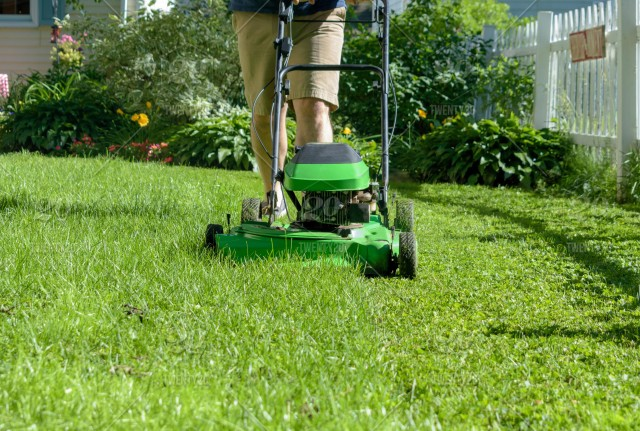 Man cutting grass in the backyard with green lawnmower - space for