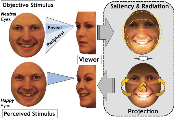 Duchenne Smile Markers Illustration Of A Conceptual Model Of Saliency And