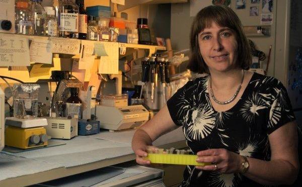 Parkinsons Gaucher story … by Ellen Sidransky M.D.