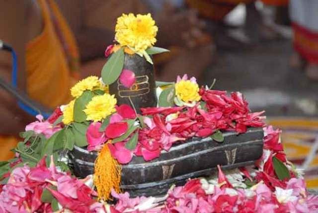 Shiva Live Wallpapers Hd सावन में भगवान शिव को चढ़ाए इस रंग के फूल होगी हर इच्छा