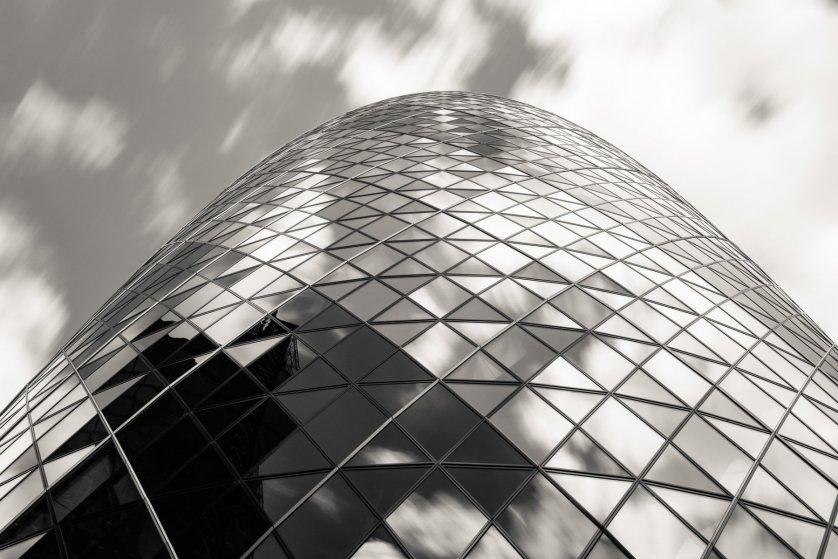 Look Up / © Samuel Raybone