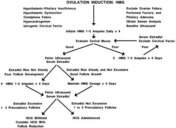Ovulation Induction With Gonadotropins GLOWM