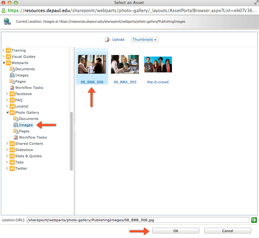 Instructions Photo or Video Gallery Web Parts SharePoint