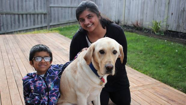 Assistance dog Leon the Labrador helps autistic youngster Stuffnz