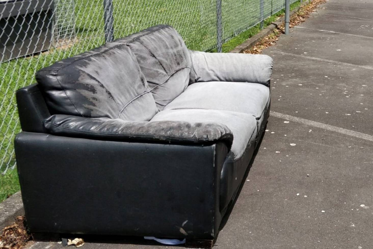 Leather Sofa Wellington Nz Damning Texts On Phone Found In Illegally Dumped Couch Stuff Co Nz