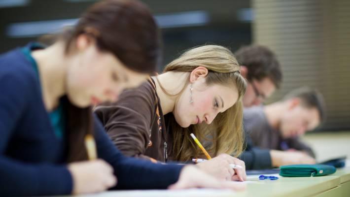 Should you let your child do an internship? Stuffnz