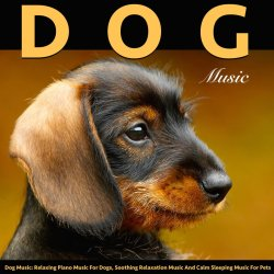 Small Of Soothing Dog Music