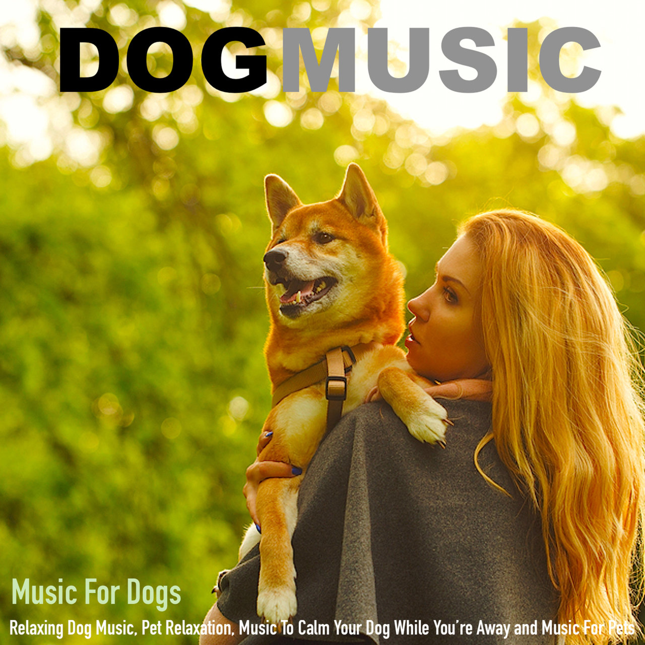 Stylish Music Ing Dog Music App Ing Dog Music 12 Hours Piano Music Dog Pet Music To Your Dog Listen To Music bark post Calming Dog Music