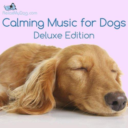 Medium Of Calming Music For Dogs