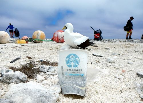 What You Can Do To Keep Plastic Out Of The Ocean