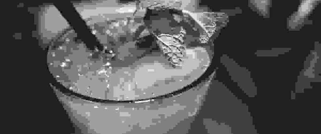SAMPLE__orange-juice-drink-with-mint1_low