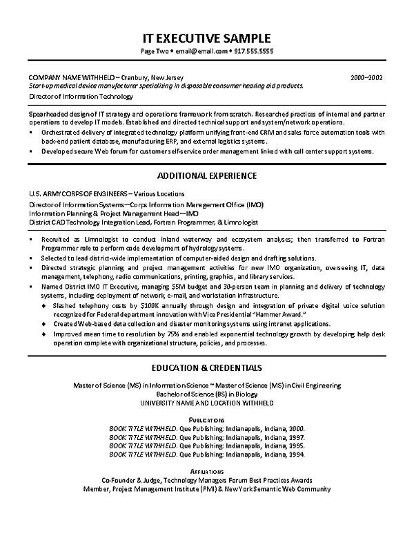 IT Director Resume Example - sample technology manager resume