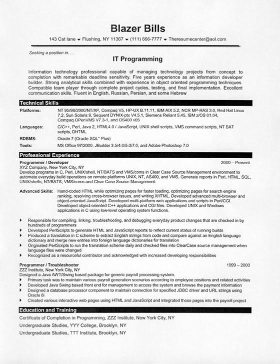 it programmer resume sample
