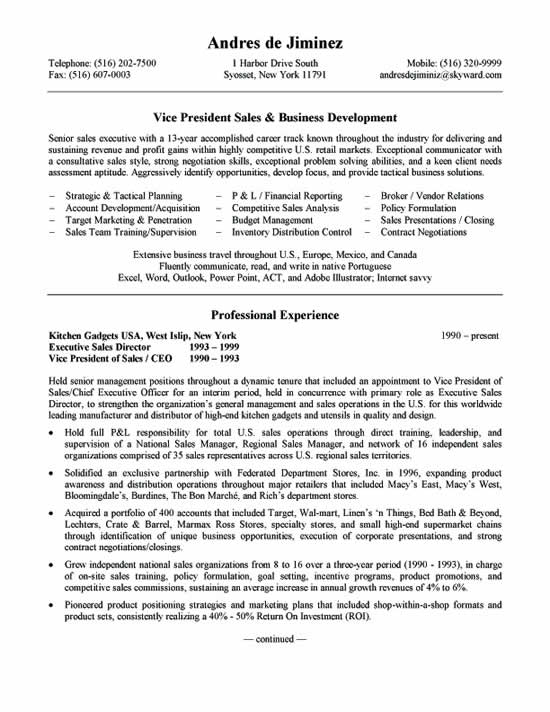 Business Development Resume Example - business development resume example