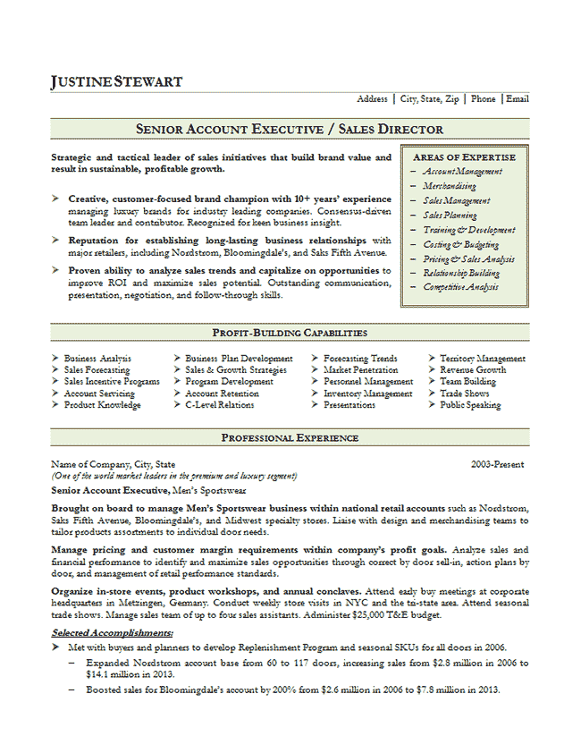 sample of senior national account executive resume