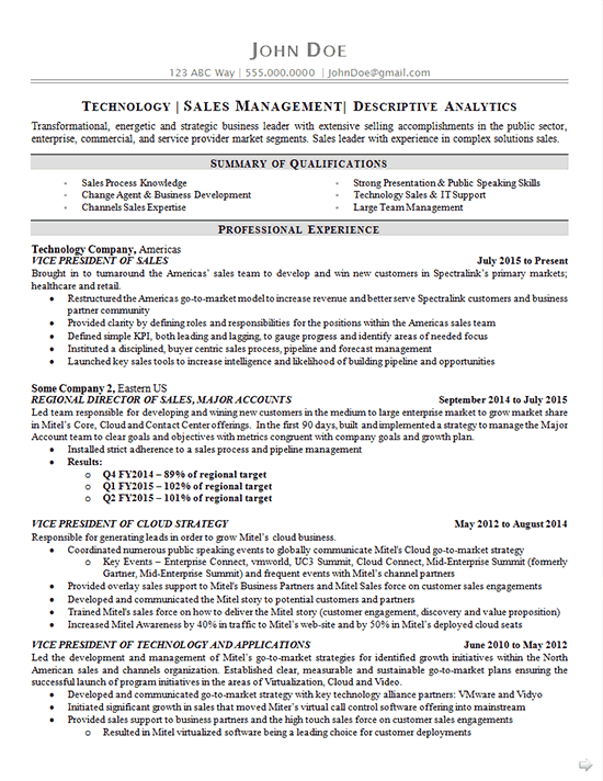 resume examples sales executive