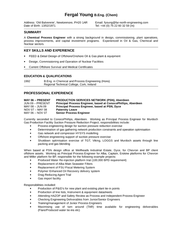 Google Docs Resume Templates By Visualcv Chronological Process Engineer Resume Template