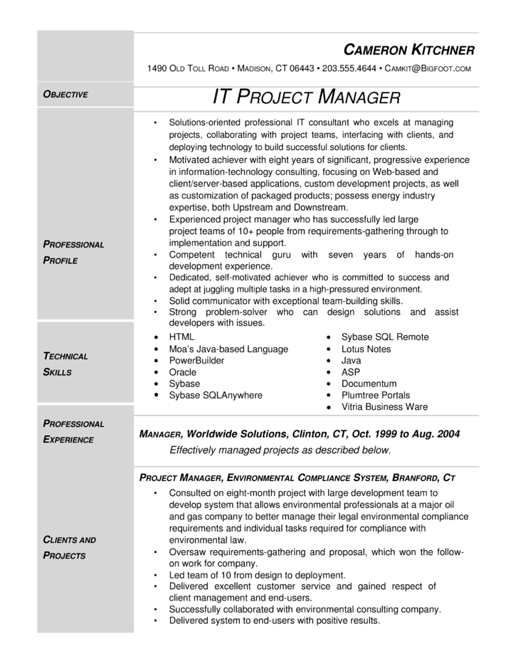 Resume Project Manager Example | Free Resume Examples