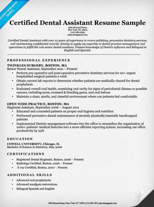 Dental Resume Examples - Examples of Resumes