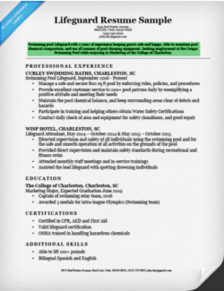 Resume Writing Quick Learner Professional resumes example online