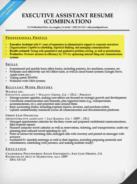 resume brief profile example