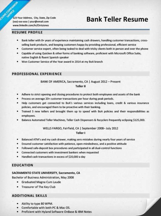 professional summary for resume for bank teller
